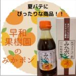 早和果樹園の【みかポン】がポン酢で選ばれる理由。感想とレシピも紹介