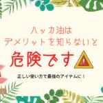 【注意】ハッカ油はデメリットを知らないと危険。4つの危険と効果を紹介