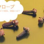 【クローブ】アロマ効能を活かす使い方。アロマオイル(精油)の効果と副作用